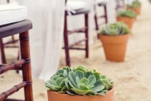 Planter-Aisle-Marker