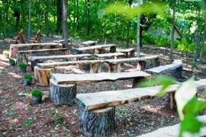 diy-tree-stump-benches-2
