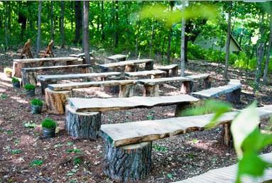 Diy Tree Stump Benches Quot I Do Quot Diys Com