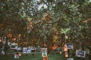 diy-dangling-photo-tree