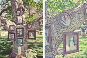 diy-tree-photo-display