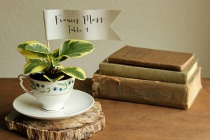 diy-teacup-planter-favors