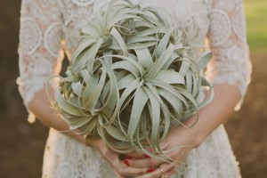 diy-air-plant-bouquet