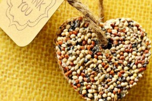 diy-birdseed-favors