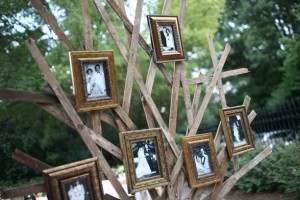 diy-family-tree-photo-display