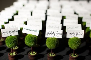diy-mini-topiary-escort-cards
